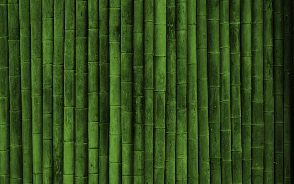 Dua Garis Arsitek - Bambu Ramah Lingkungan